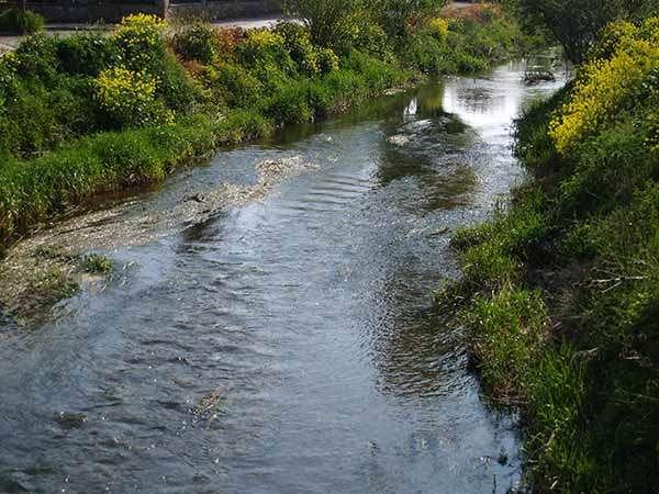 El río Ubierna, a su paso por Sotopalacios.
