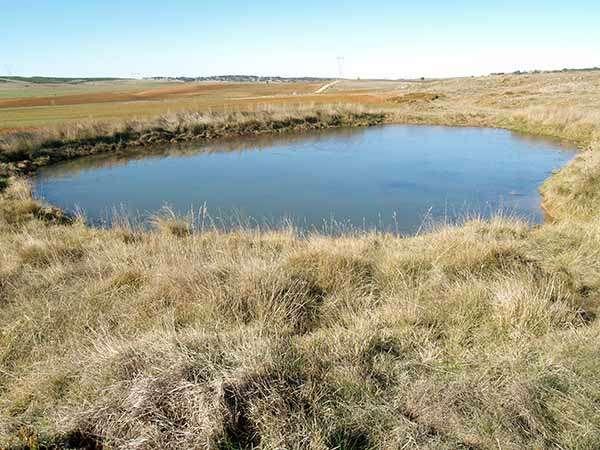 La Calentona es una de las lagunas kársticas que hay en el término de Masa.