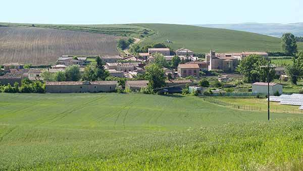 Vista panorámica de Celada de la Torre, rodeada de campos de cultivo.